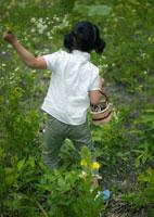 野花を摘む女の子