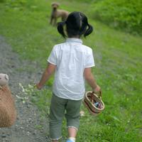 野花を持って歩く女の子と犬