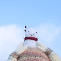 頭の上に置いた雪ダルマ