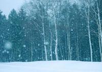 冬の雪景色 20027003009| 写真素材・ストックフォト・画像・イラスト素材|アマナイメージズ