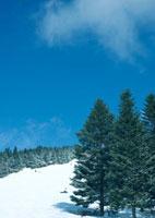 快晴の冬景色 20027003022| 写真素材・ストックフォト・画像・イラスト素材|アマナイメージズ