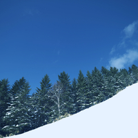 ゲレンデからの冬景色