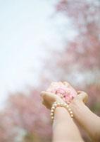 桜の花びらを持つ女性の手元
