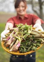 ザルに盛った山菜を持つ女性