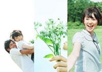 草原で手をつなぎ幸せそうなカップルと野花のコラージュ