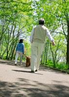 新緑の中を散歩するシニア夫婦と犬