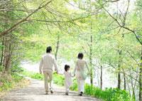 新緑の中を手をつないで歩く3人家族の後姿