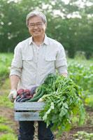 農園で採れたての野菜を持つシニア男性