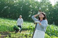 農園で空を見上げるシニア夫婦