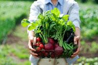 農園に立ち採れたての野菜を持つ20代の女性の手元