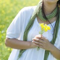 菜の花畑で花を持つ20代女性の手元