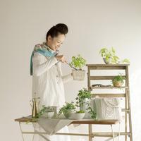 観葉植物の手入れをする20代の女性 20027005685| 写真素材・ストックフォト・画像・イラスト素材|アマナイメージズ