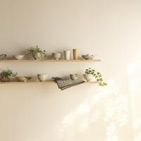 和食器と観葉植物を飾ったキッチンの棚