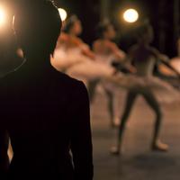 ステージのバレリーナを見つめる男性の後姿 20027006355| 写真素材・ストックフォト・画像・イラスト素材|アマナイメージズ