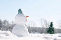 雪原に立つ雪だるまとクリスマスツリー