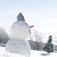 雪原に立つ雪だるまとクリスマスツリー 20027006591| 写真素材・ストックフォト・画像・イラスト素材|アマナイメージズ
