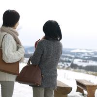 冬景色を眺める2人のシニア女性の後ろ姿