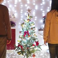 クリスマスツリーをみつめる二人の後姿