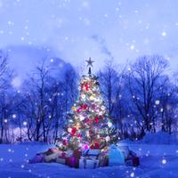 雪の中の光り輝くクリスマスツリーとたくさんのプレゼント 20027006755| 写真素材・ストックフォト・画像・イラスト素材|アマナイメージズ
