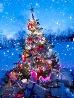雪の中の光り輝くクリスマスツリーとたくさんのプレゼント 20027006756| 写真素材・ストックフォト・画像・イラスト素材|アマナイメージズ