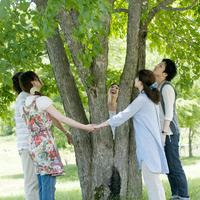 手をつなぎ木を囲む大学生