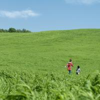 草原を歩く親子の後姿