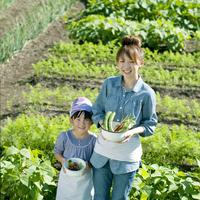 家庭菜園で野菜を持ち微笑む親子