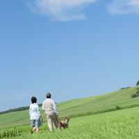 草原を歩くシニア夫婦と犬の後姿