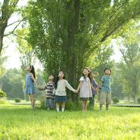 ポプラの木を囲み手をつなぐ子供たち