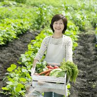 木箱に入った野菜を持ち笑顔のシニア女性