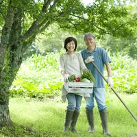 収穫した野菜を持ち笑顔のシニア夫婦