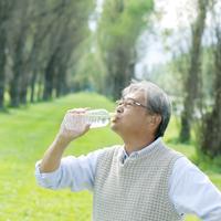 ポプラ並木で水を飲むシニア男性 20027007763| 写真素材・ストックフォト・画像・イラスト素材|アマナイメージズ