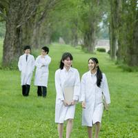 ポプラ並木を歩く研究員