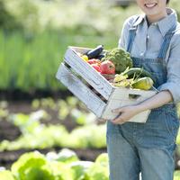 収穫した野菜を持ち微笑む女性