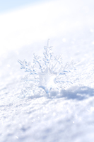 雪原と雪の結晶