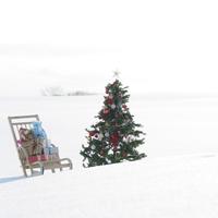 クリスマスツリーとソリにのったプレゼント