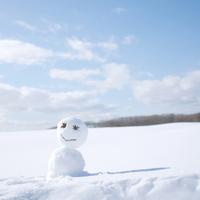 雪原に立つ雪だるま
