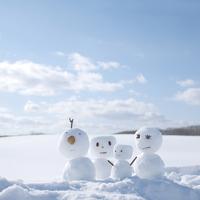 雪原に並ぶ雪だるま 20027010028| 写真素材・ストックフォト・画像・イラスト素材|アマナイメージズ