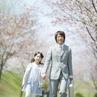 桜並木道で手をつなぐ親子 20027010043| 写真素材・ストックフォト・画像・イラスト素材|アマナイメージズ