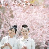 桜を持ち微笑む親子