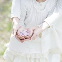 桜を持つ親子の手元