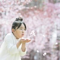 桜の花びらを吹く女の子