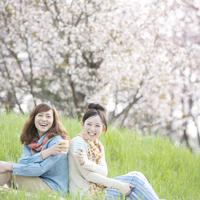桜の前で背中合わせに座る2人の女性