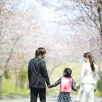 入学式へ向かう親子の後姿 20027010069| 写真素材・ストックフォト・画像・イラスト素材|アマナイメージズ