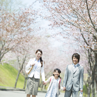 桜並木道を歩く親子
