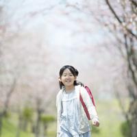 桜並木道を歩く女の子
