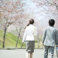 桜並木道を歩くビジネスマンとビジネスウーマンの後姿