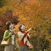 紅葉を眺める2人のシニア女性 20027010318| 写真素材・ストックフォト・画像・イラスト素材|アマナイメージズ