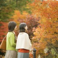 紅葉を眺める2人のシニア女性の後姿
