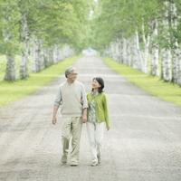 白樺並木を歩くシニア夫婦